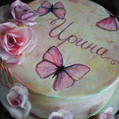 Rodjendanske torte Rucno slikani leptiri